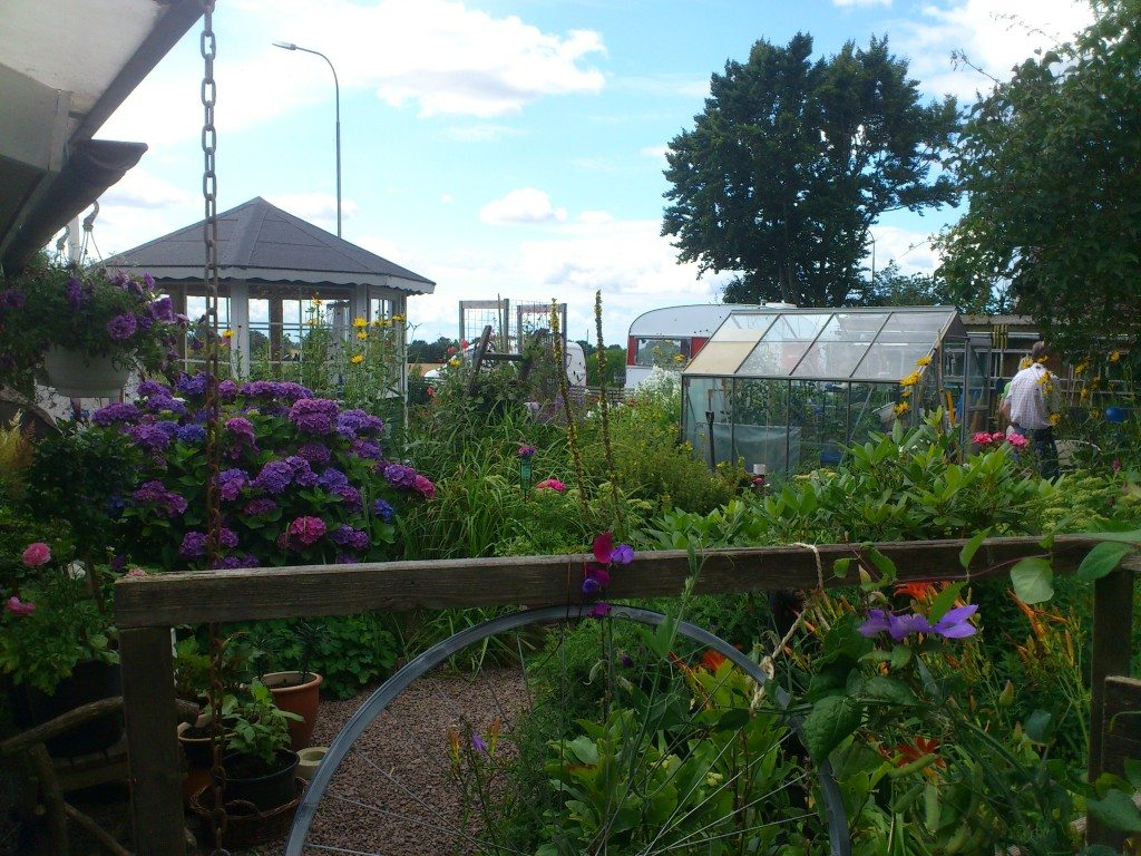 Susannes trädgård