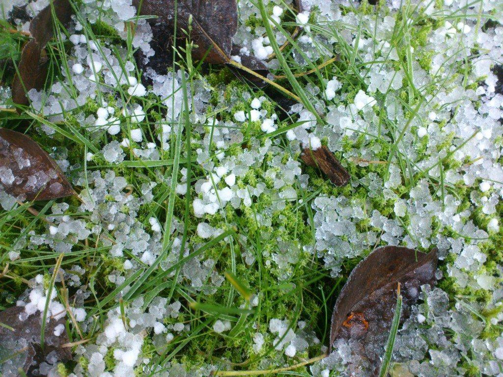 hagel och frost